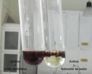 Demostración del comportamiento como base de la anilina: reacciona frente a un ácido pero no ante un hidróxido.